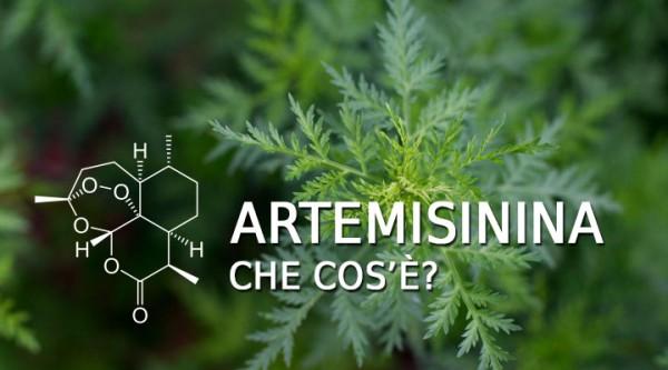 artemisinina